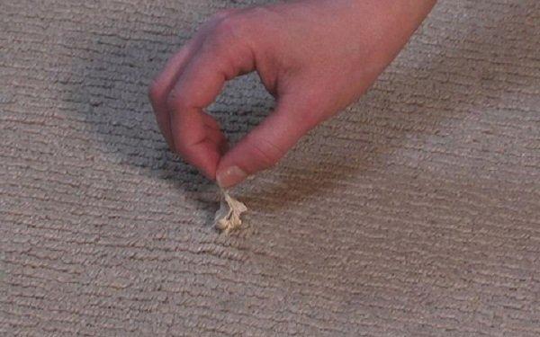 жвачка на ковре