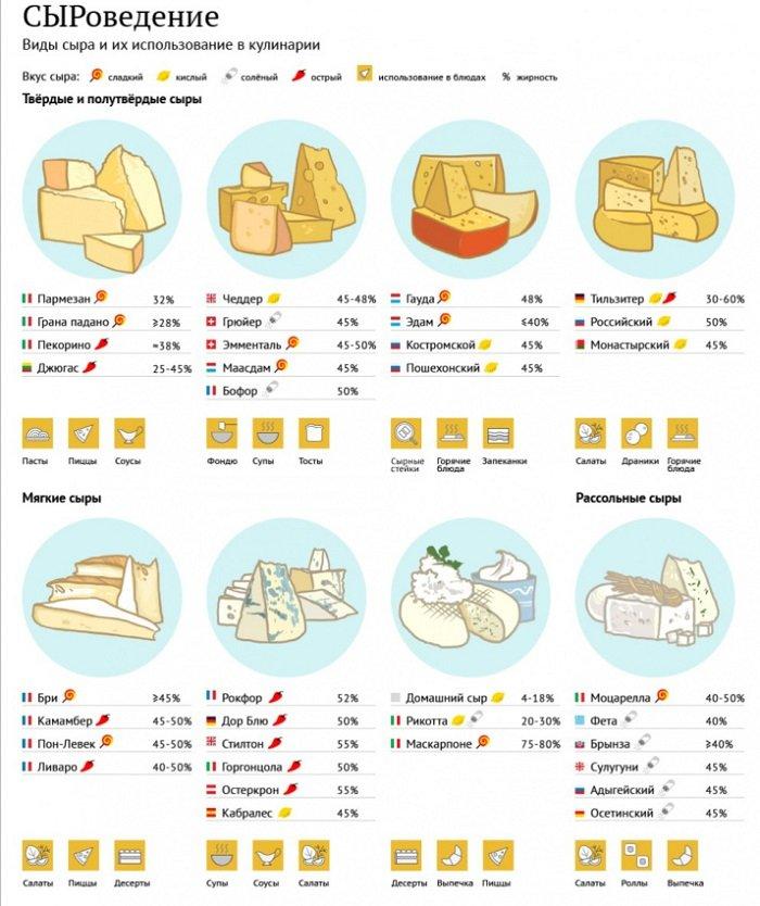 инфографика сыры