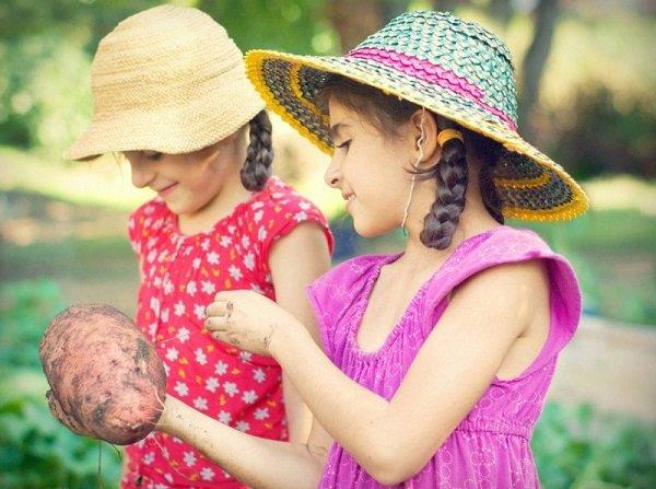 девочки с картофелем