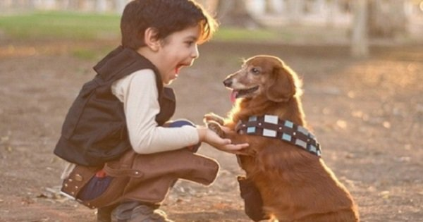 Бесценный помощник в воспитании детей: 12 причин, почему каждый ребенок должен расти с собакой.