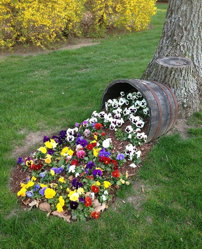 Как оформить участок цветами
