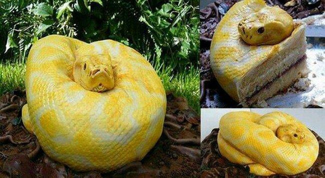 торт змея