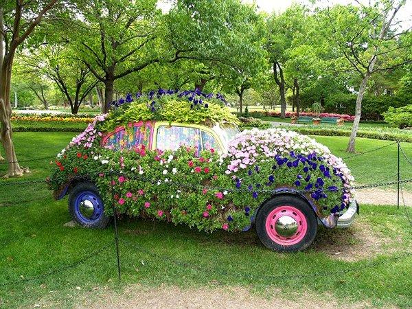 автомобильный цветник