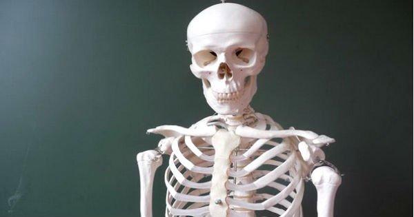Раскрыты 7 лучших продуктов для крепких костей. Забудь про травмы и переломы!