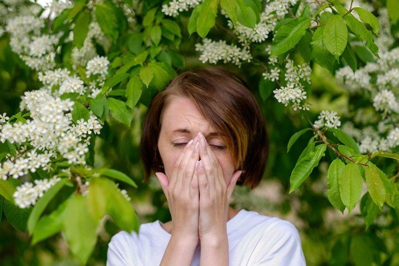 аллергия фото