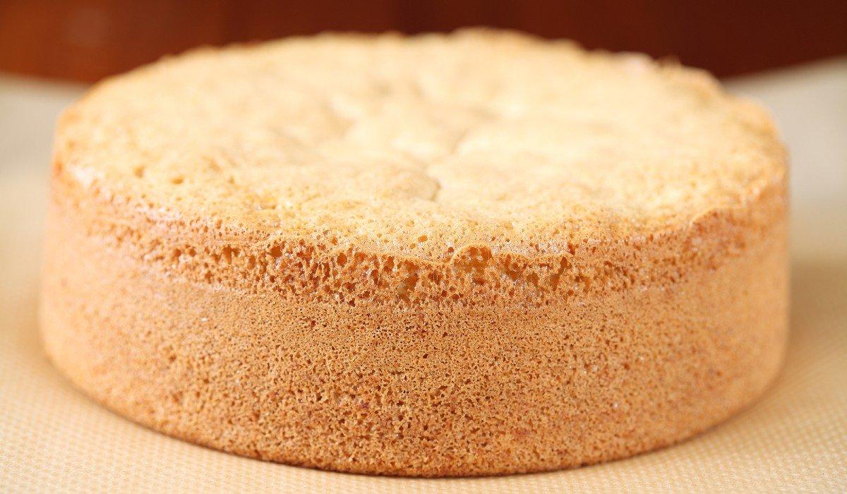 рецепт пышного бисквита для торта с фото экспозито юная испанская