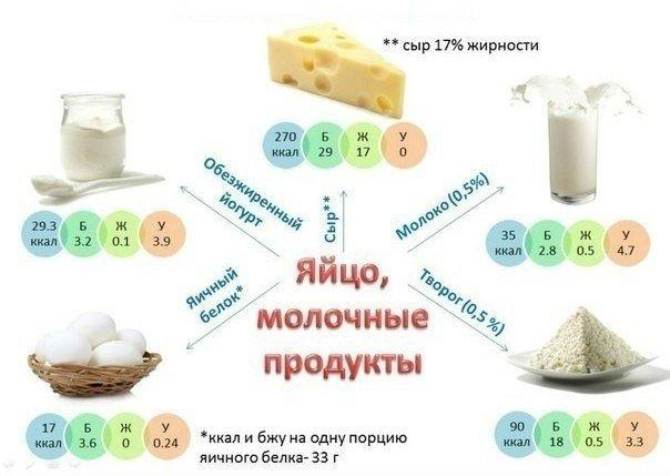 пищевая ценность молочных продуктов
