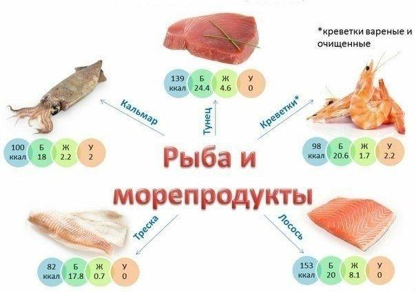 пищевая ценность рыбы и морепродуктов