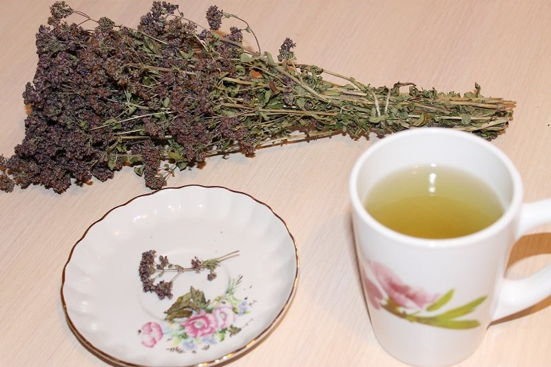 чай с душицей чем полезен
