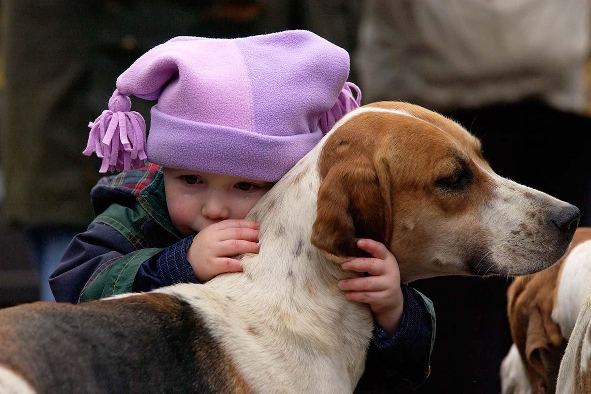 Почему говорят, что чем больше узнают людей, тем больше любят собак