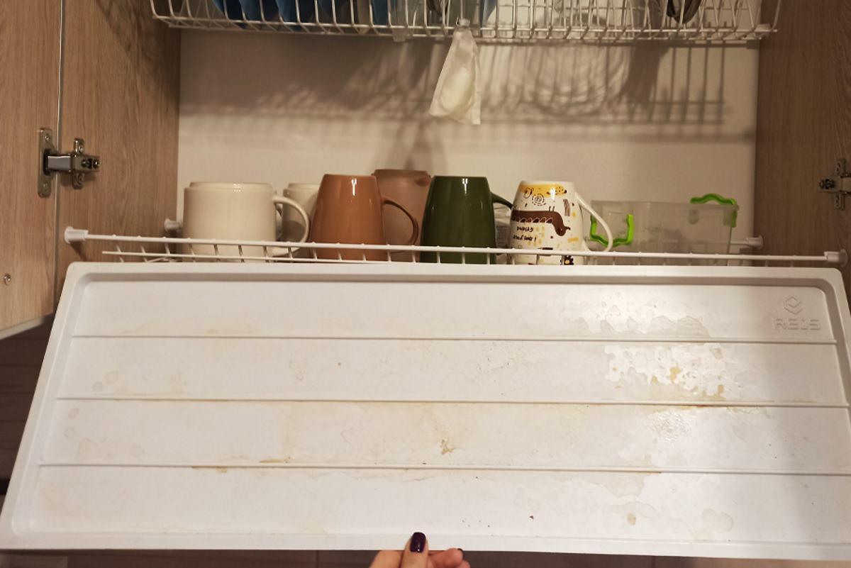 Чистка поддона для сушки посуды, который не вынимали с прошлого Нового года