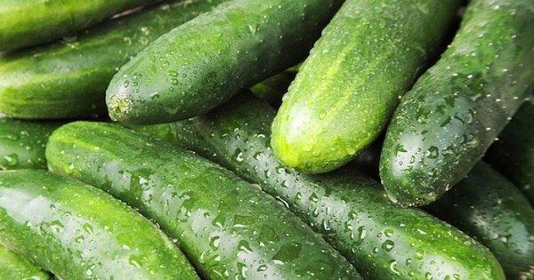 Невероятная польза свежих огурцов: 7 причин употреблять этот овощ чаще.