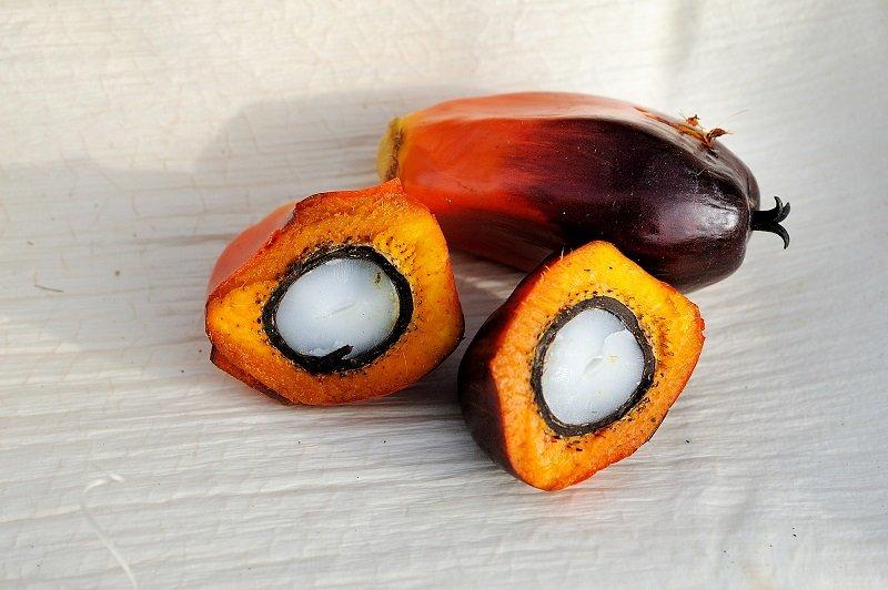 у чому міститься пальмова олія