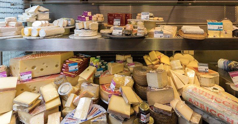 Чем заменить дорогой сыр: удачные варианты замены и рецепты самостоятельного приготовления