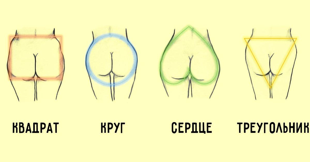 разновидности женских жоп - 7