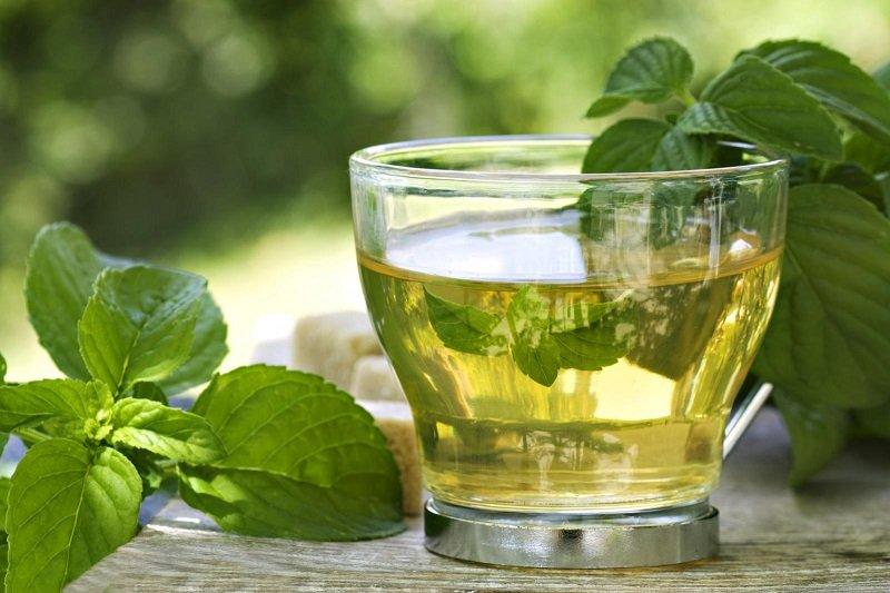 какие травы пить вместо чая
