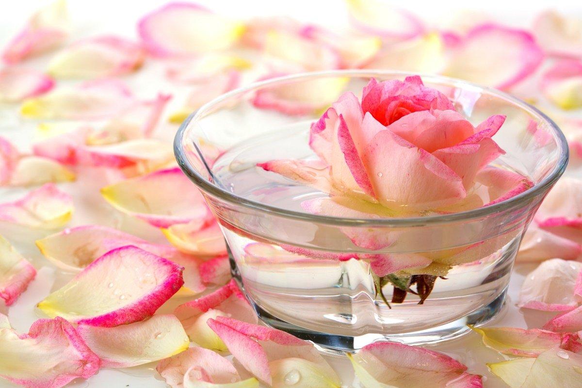 цветочная вода жасмина