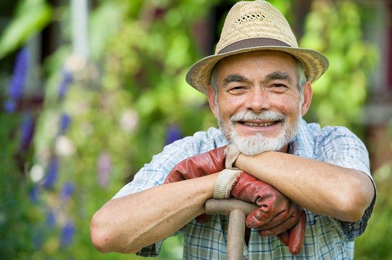 советы огородникам и садоводам