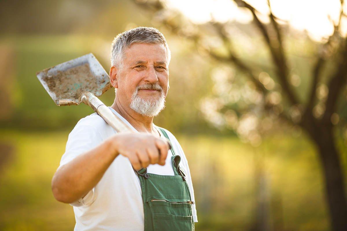 пенсионер на огороде