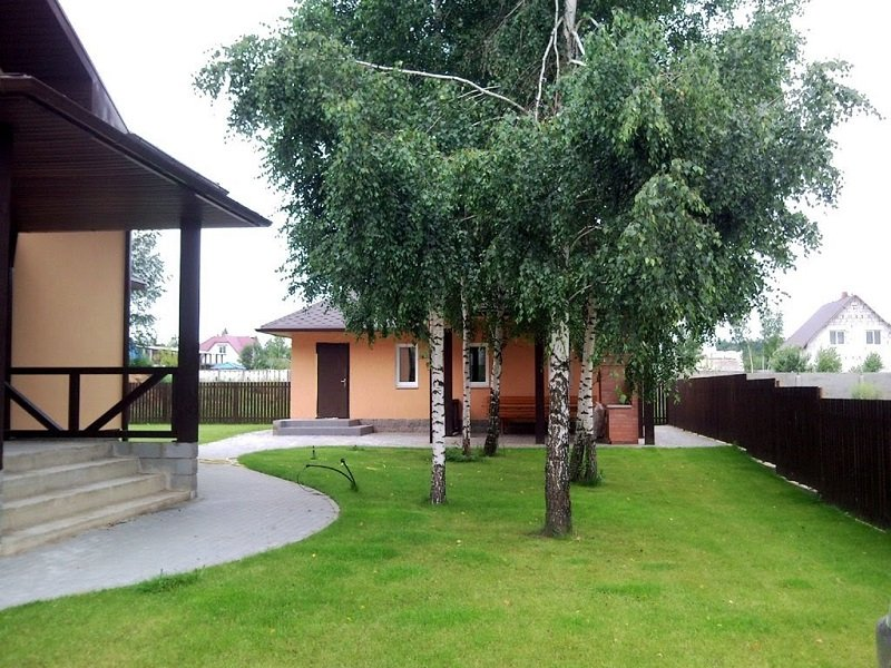 деревья возле жилого дома