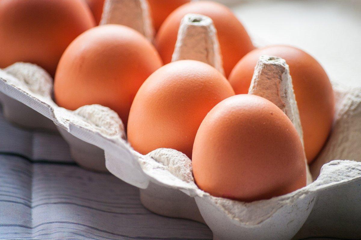 Как правильно проводится дезинфекция яиц в домашних условиях