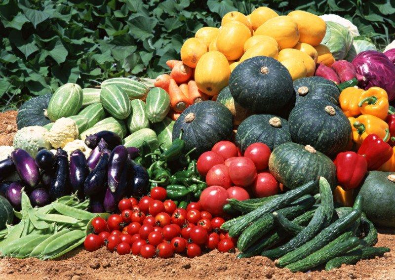 лечебная диета при артрите