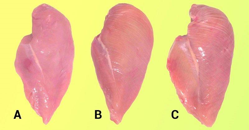правда о куриных грудках