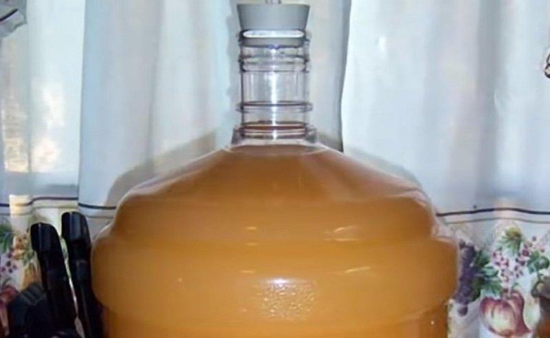 готовим домашнее вино из яблок