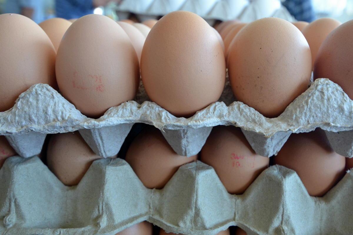 Зачем складывать яйца в пятилитровые бутыли