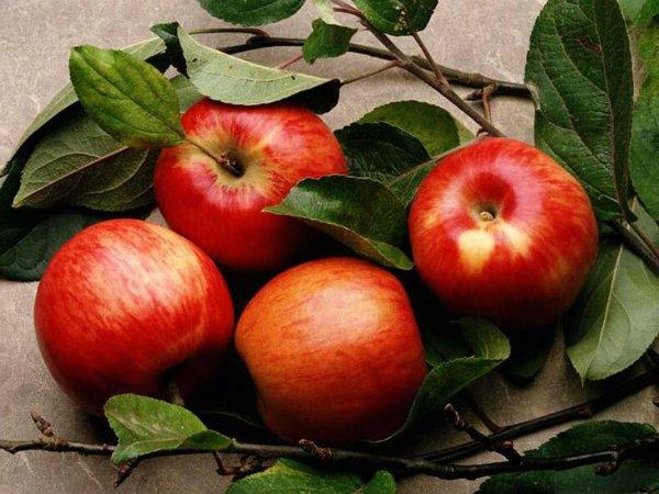 Яблоко против целлюлита: домашняя процедура уберет по 2 см с бедер всего за месяц!