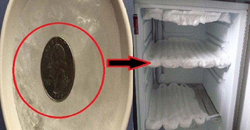 морозильная камера фото