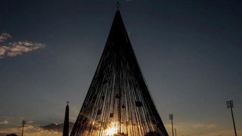 елка в никарагуа