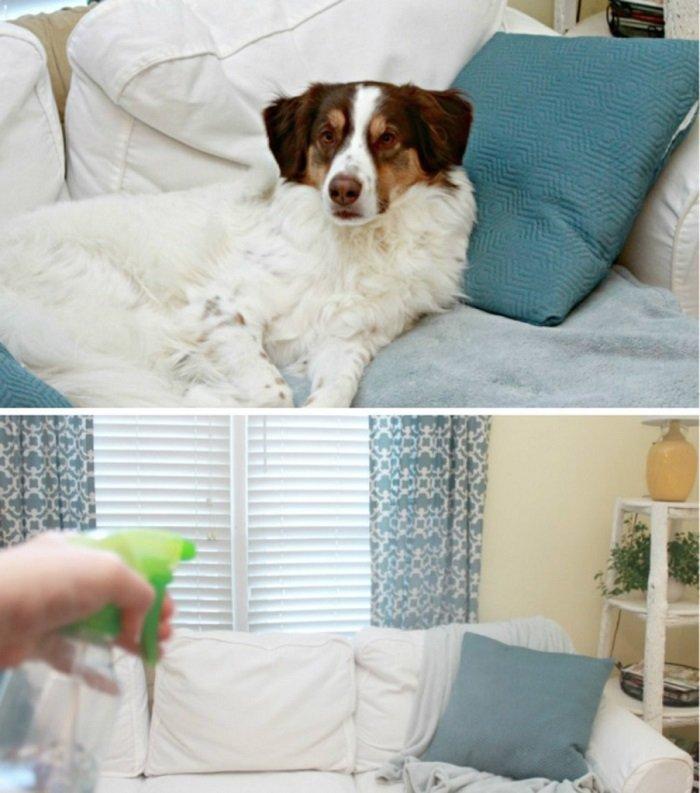 средства для уборки за животными