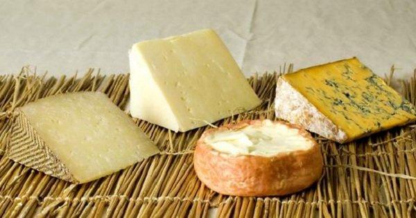 12 удивительных и редких фактов о сыре. Обожаю этот продукт!
