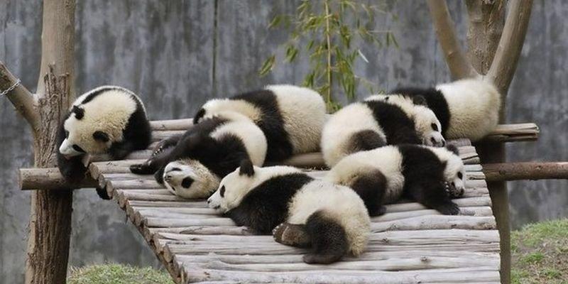 китайская подушка