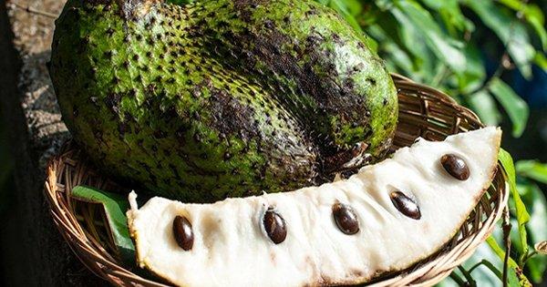 Шокирующее открытие ученых: найден чудо-фрукт, который может излечить рак!