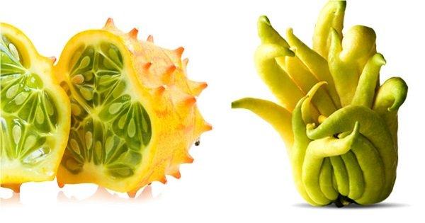 10 экзотических фруктов, которые ты вряд ли пробовал. Ради них стоит посетить южные страны!