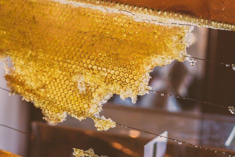 вред мёда