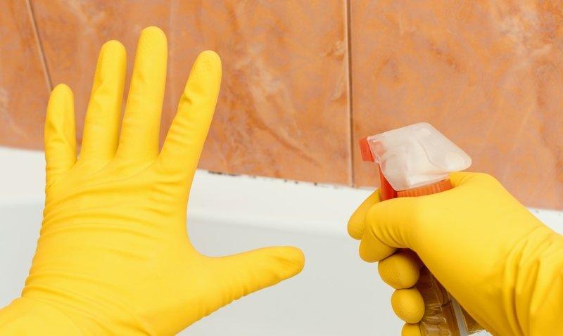 грибок в ванной средства борьбы