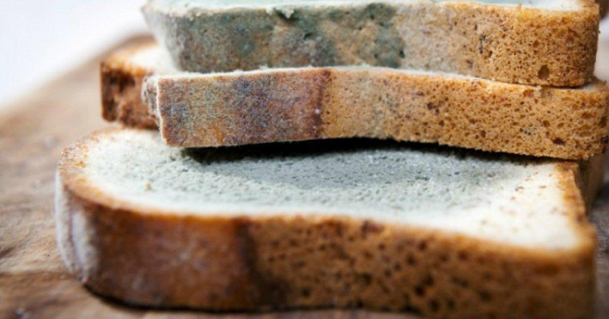 Вот почему обычный хлеб может стать серьезной угрозой твоему здоровью!