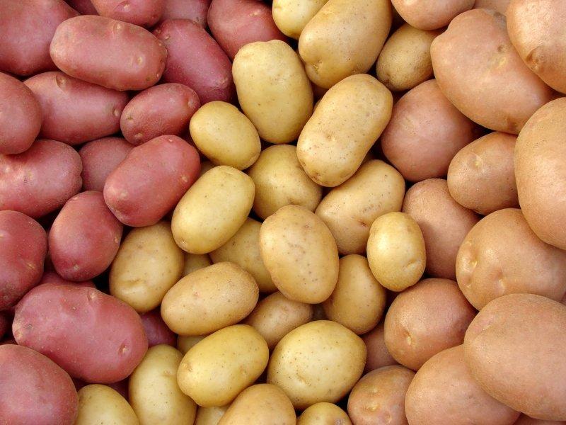 хранение картофеля зимой в квартире