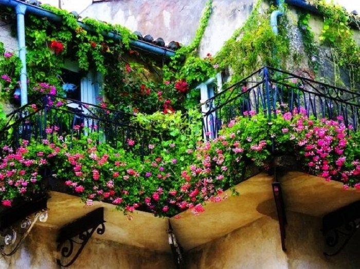 как устроить сад на балконе