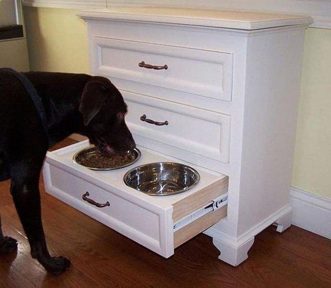 скрытая миска для собак в ящике