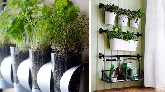 Свежесть зелени и трав круглый год: 15 идей для домашнего огорода на кухне.