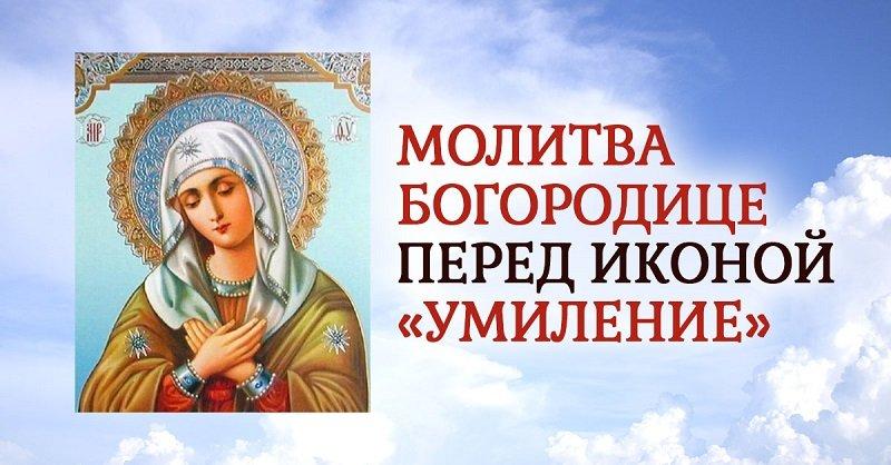 Зачем в больнице необходима икона Божьей Матери «Умиление»
