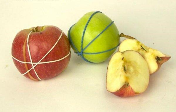 резинка на яблоках