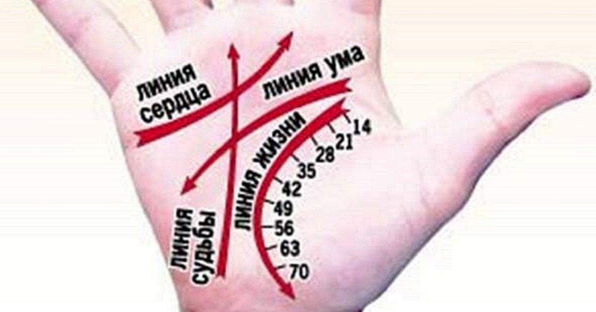 Картинка сердце из рук