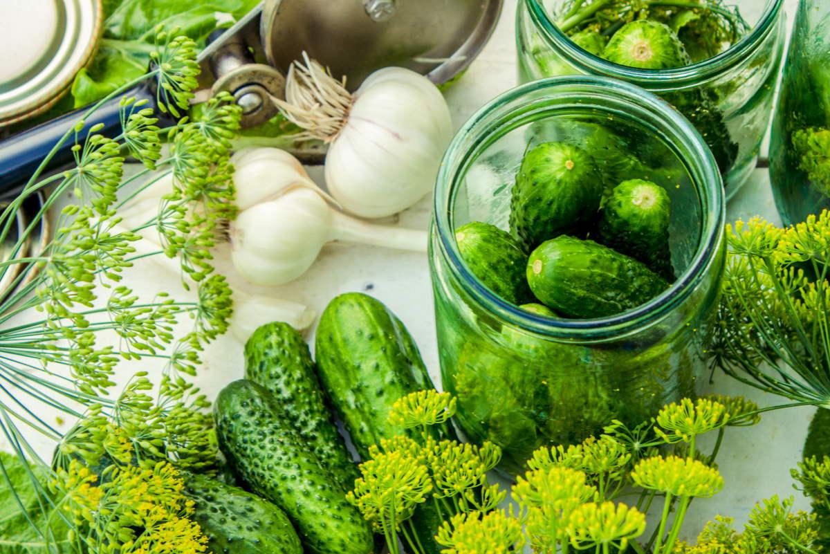как сохранить свежие огурцы без холодильника