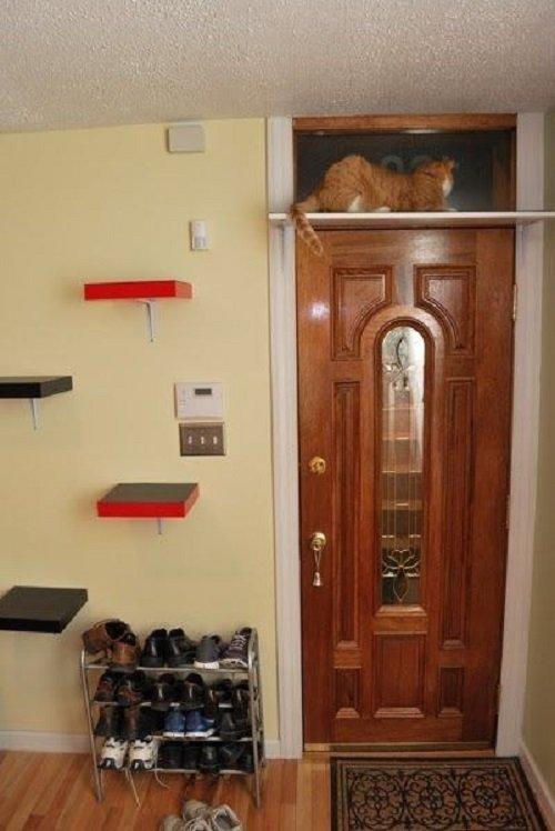 полка для кота