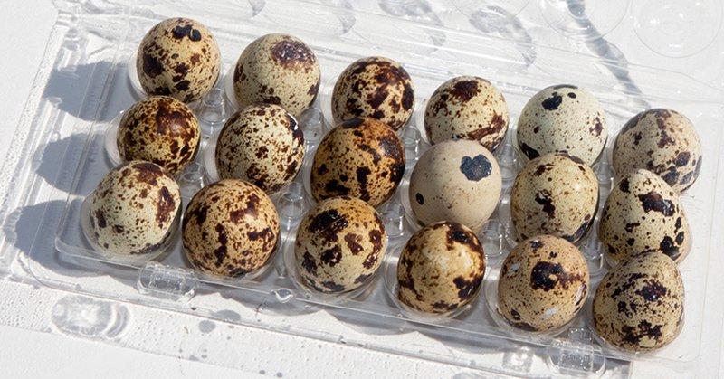 как красиво покрасить яйца в домашних условиях